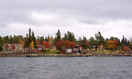 Autumn colours on Norrskär
