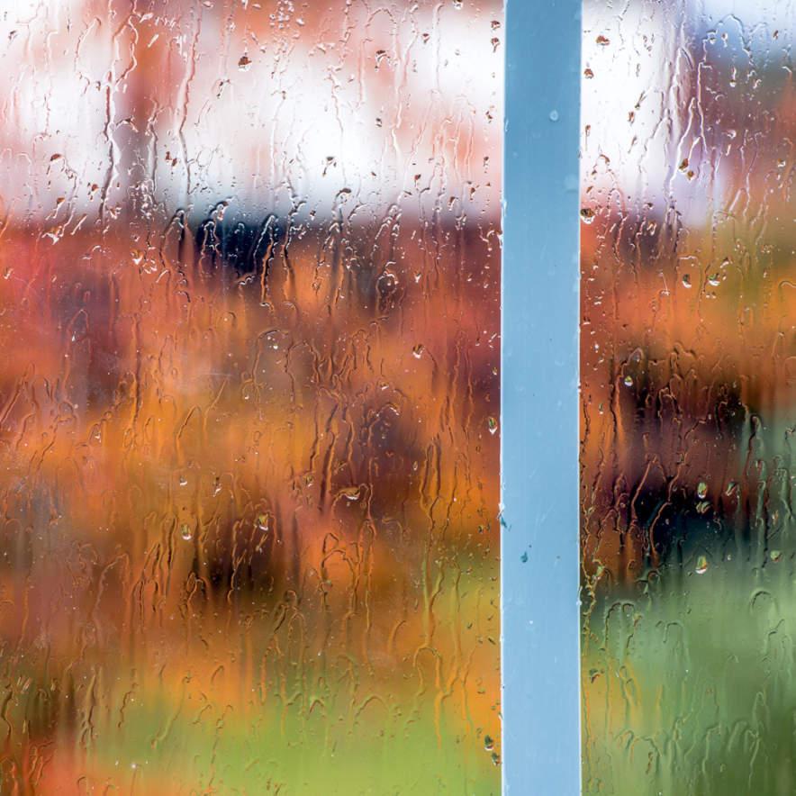 Autumn rain –looking through the window