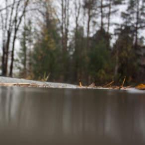 Murky-puddle