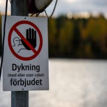 Swedish triathlon?