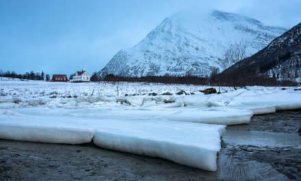 Icy coast I