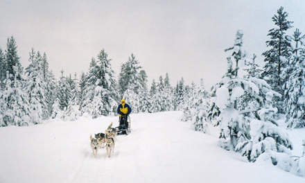 13 years ago: dog sledding