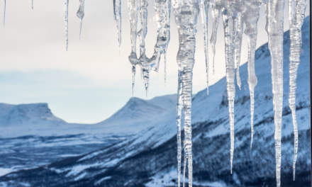 Lapporten: Ice
