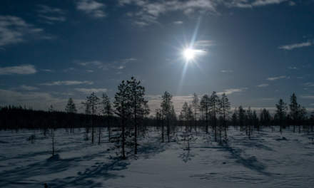 Moony landscape