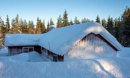 Snowed in shed