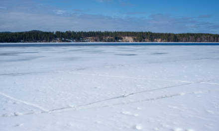 Skellefteälven – partly still ice covered