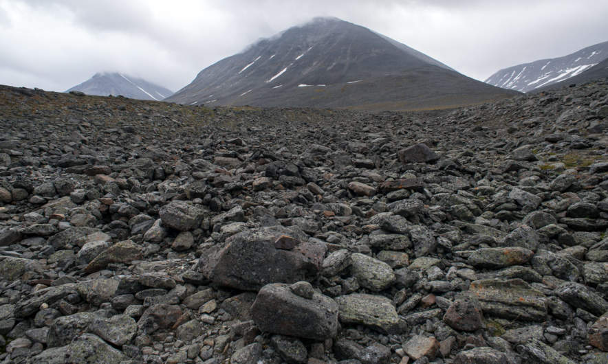 Barren boulder field