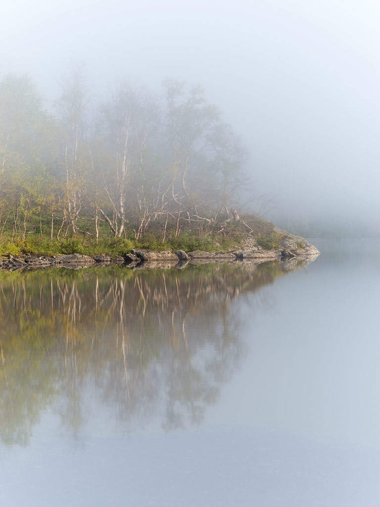 Foggy reflection III