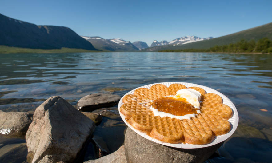 Waffle with cloudberry jam