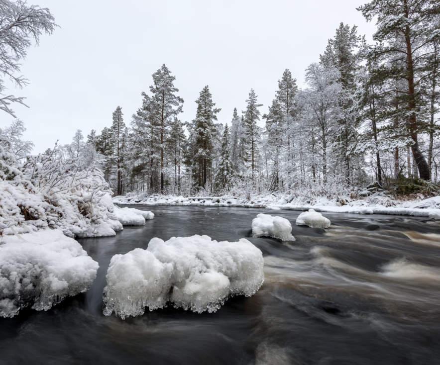 Ålsån in November
