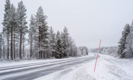 Winter road I