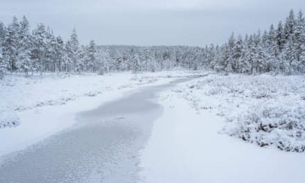 The first ice covered stream