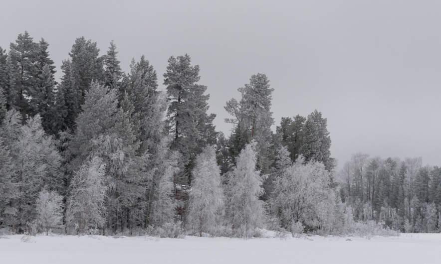 On the lake Arvidsjaursjön
