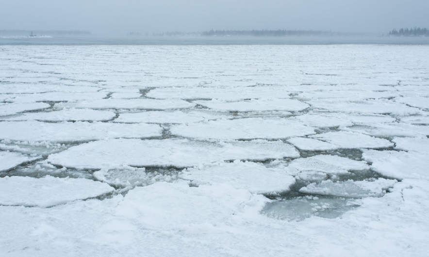 Ice floes floating on the Baltic Sea