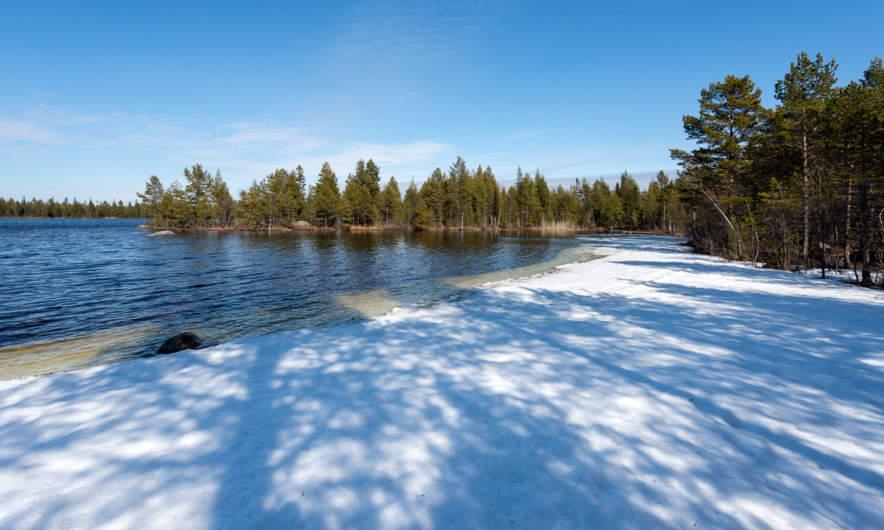 Snesviken: icy shoreline