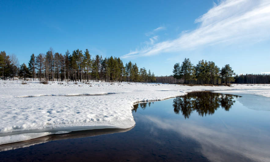 Vårvinter between Norsjö and Umeå II