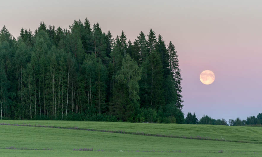 Moonrise in Ersmarkbodarna