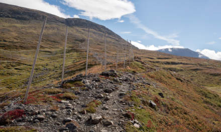 Mountain path along the reindeer fence