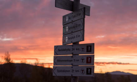 Signposts in the sunrise