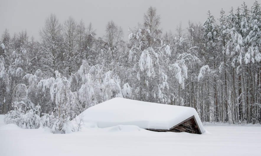 Collapsed barn near Tjärn