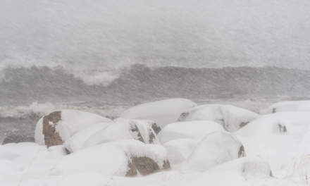 Heavy snowfall at the coast I