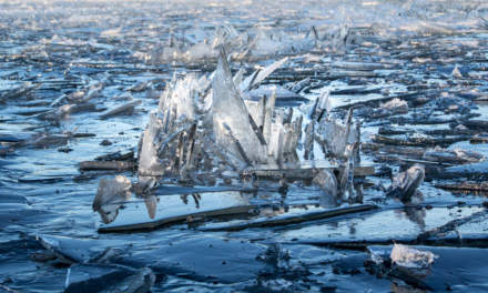 Broken ice floes – detail