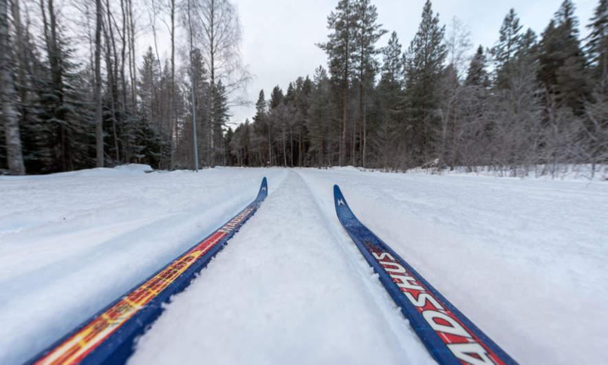On the ski trail
