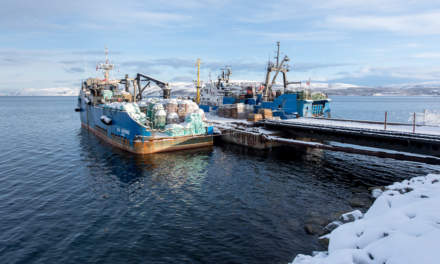 Russian crab fishing boats
