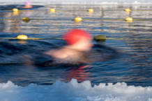 Blurred swimmers