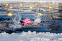 Swimmer: Anna-Carin Nordin