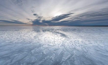 Wet ice on the Baltic Sea