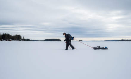 Hans skiing to Bastuholmen