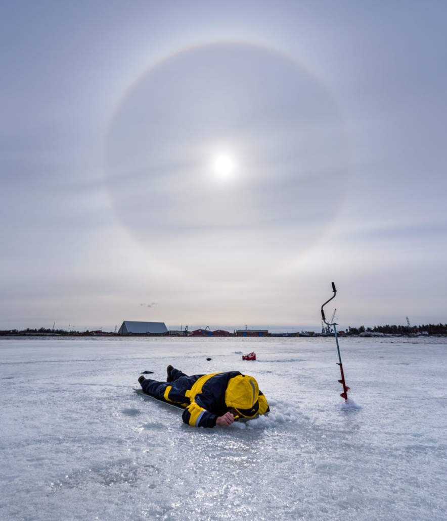 An ice fisher looking for prey, the halo encircled sun above