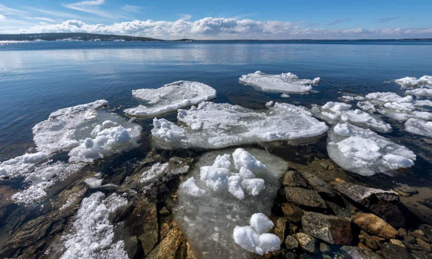 Last seasons ice floes at Bjuröklubb