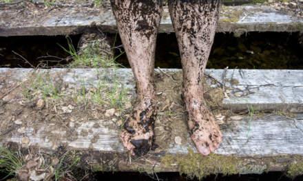 Muddy legs I