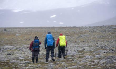 """Arctic hiking II"""