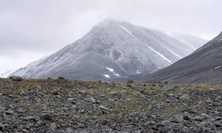 Arctic landscape I