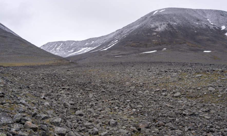 Arctic landscape II