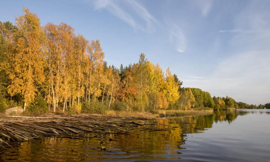 Autumn in Skelleftehamn