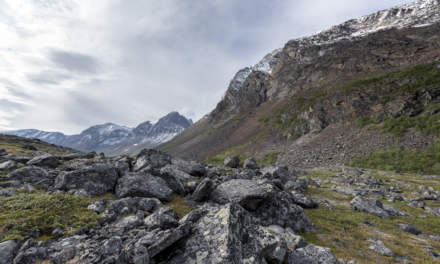 Another rocky field