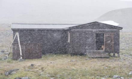 Snowfall increases