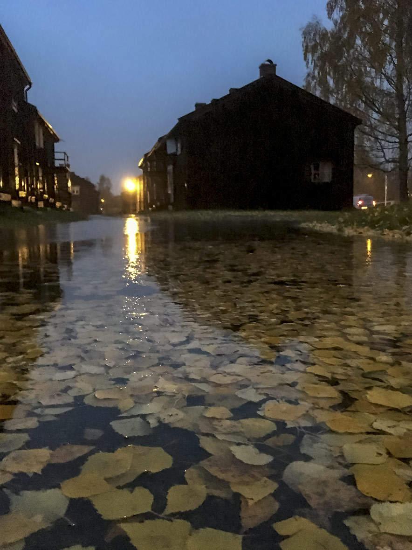 Bonnstan –Skellefteå or Venice?