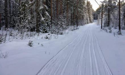 Ski track in Skelleftehamn