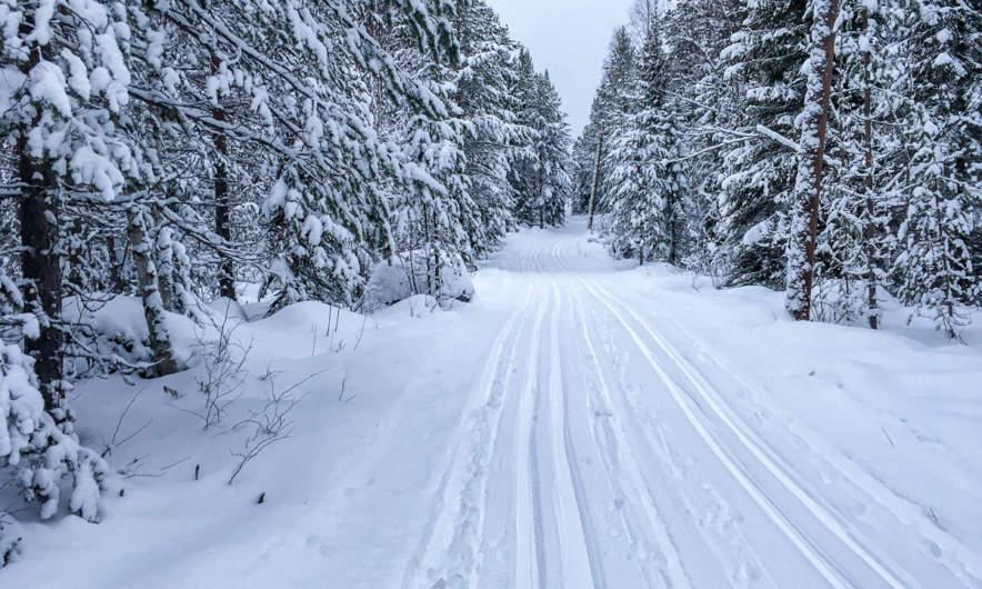 Ski trail in Skelleftehamn