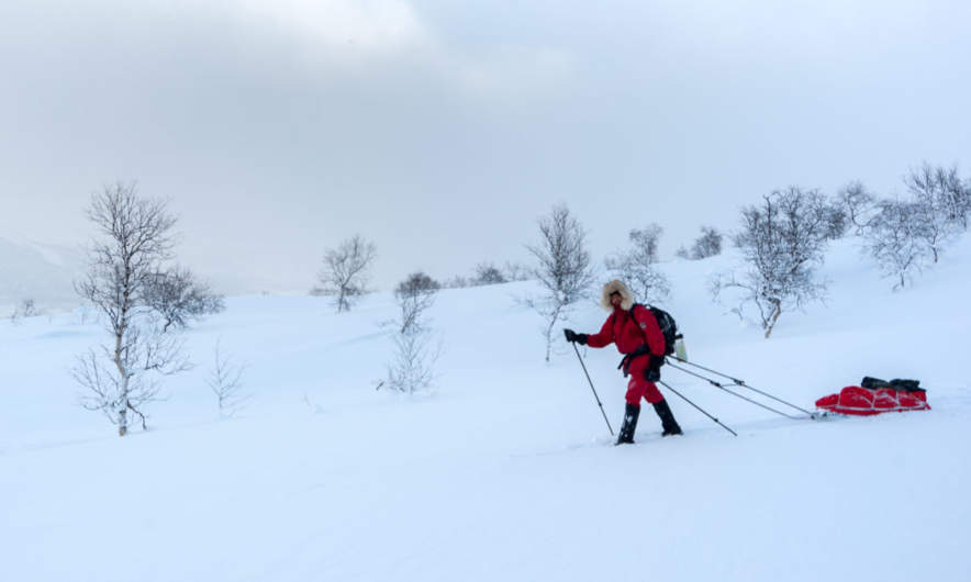 Me skiing through the sparse birch forest – photo: Jonas Balbasus