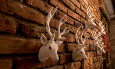 Reindeer decorated wall