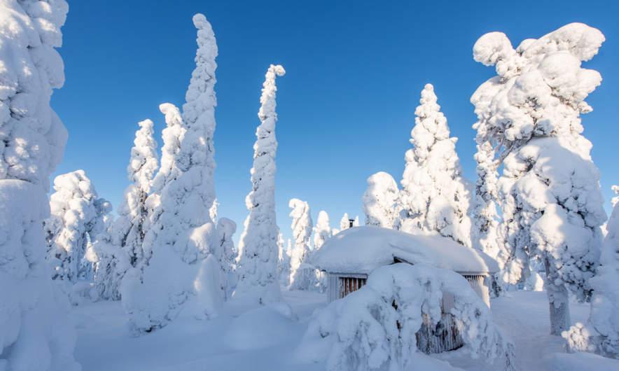 Solberget mountain hut –well hidden