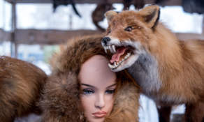 Stuffed fox and fur products
