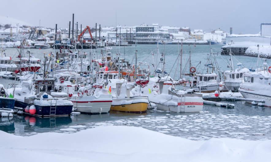 Båtsfjord harbour I