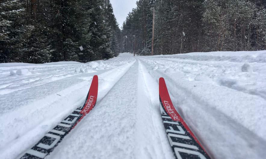 Cross country skiing in Skelleftehamn